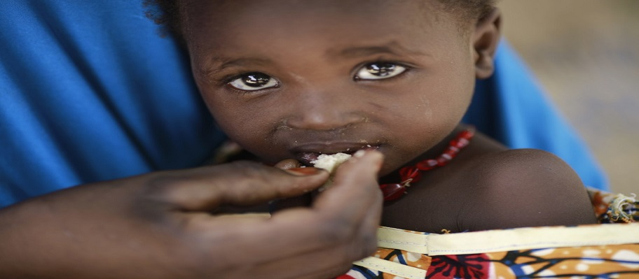 Lake Chad region: Disease outbreaks and hunger